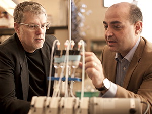 Larry Wackett and Alptekin Aksan look at set up of experiment in lab