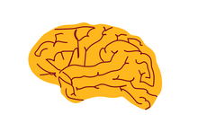 Gold and maroon brain illustration
