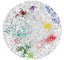 A ball of colorful connections showing gene networks